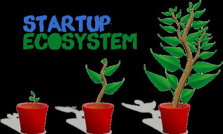 startup ecosystem